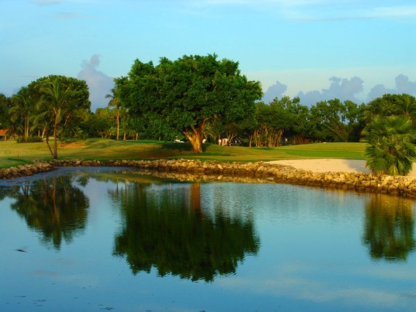 Golf and Lunch : Golfing and Lunch in Florida