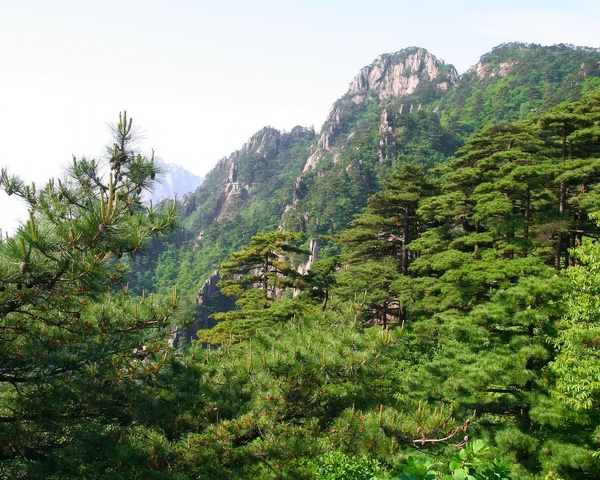 Huangshan landscape: The shot was taken on the tourist pathway in Huangshan (Yellow Mountains), provice Anhoi, China. Great view, but the sky is slightly faded, as usual :(The file prepared to be a computer wallpaper in 1280*1024 resolution. Any comments are welcome.