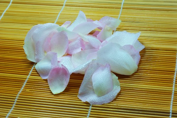 wet petals: light pink wet petals