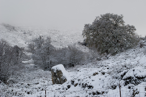 Snow in the mountains of Sardi: Snow in the mountains of Sardinia. The highest peak of the island is called