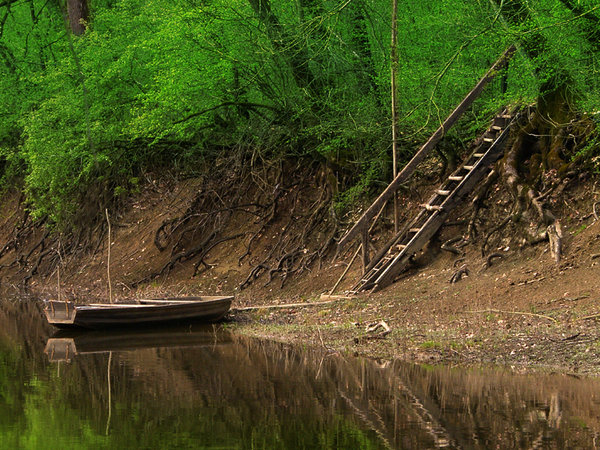 Boat on the river: Old boat on the river Lonja.Nature park Lonjsko polje Croatiahttp://www.lonjsko-polje. ..