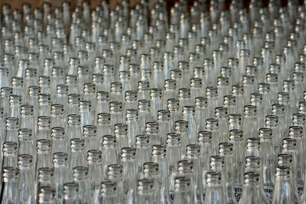Bottles: rows and rows of empty bottles