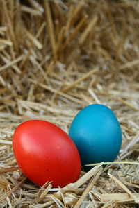 easter eggs 1: let me know if you find it usefull :)another easter photo set can be found here http://www.sxc.hu/photo/9- 79186
