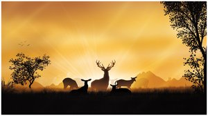 Early morning: Deers in the early hours of a day.