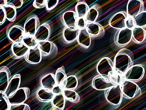 Flowers: Abstract floral daisy design.