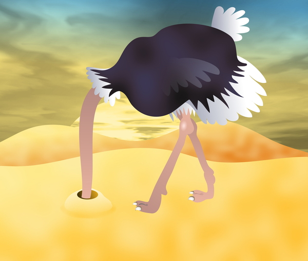 Ostrich: Cartoon ostrich burying it's head in the sand.
