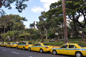 Yellow taxi rank: Queue of yellow taxis in Madeira