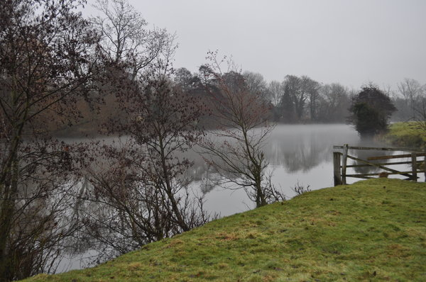 Mist on the River Thames or Is: Cold damp misty day in December in south Oxfordshire. Walking along the River Thames.