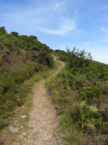 The only way is up: Hillside path - part of a coastline walk