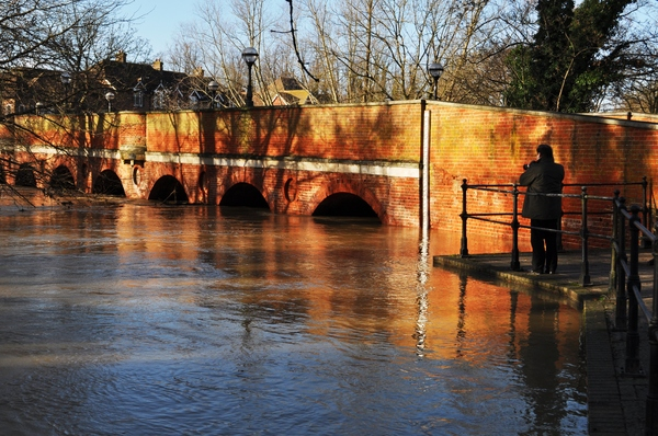Bridge on River Mole: River Mole with water nearly up to the top of the arches of the road bridge.