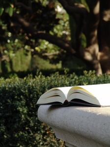 Reading at park: A book over a sit at the park