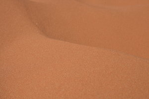 Coral Pink sand dunes: Some pictures of the Coral Pink sand dunes in Utah, America