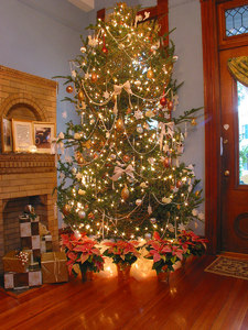 Christmas Tree - 14 ft: A 14ft Christmas tree, trimmed