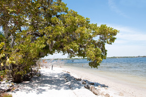 De Soto, Florida: De Soto Park, Florida, near where De Soto landed in America