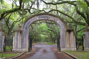 Wormsloe Plantation: The entrance to Wormsloe Plantation, shot in pouring rain. Almost 500 line the drive. Entrance was erected when the plantation was a country estate. Located in Savannah, Georgia, USA