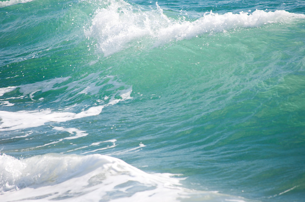 Tropical Ocean wave: Ocean wave off the coast of Florida