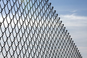 Security fence 1: Fence