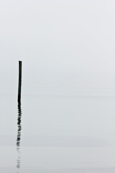 Piling Reflected: A reflected piling on a foggy, misty day.