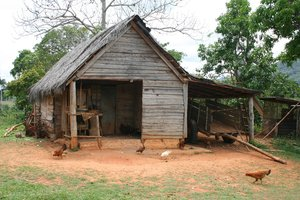 Cuban Shack: Tobacco farmer's shack in Cuba.