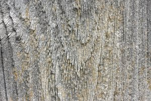 Wood Shingle Macro: Macro of an old wheathered wood shingle.