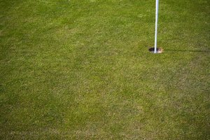 Golf_3: A golf course in Sweden