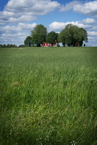 Farm in Sweden_1: A farm in the south of Sweden