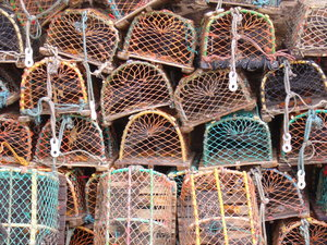 Stacked Lobster Pots: This image captures the lobster pots stacked up near the harbour at Beadnell, a symbol of the Northumbrian coast's fishing heritage.It's one of my favourite photos - view at full size to really appreciate the amazing colours and detail.