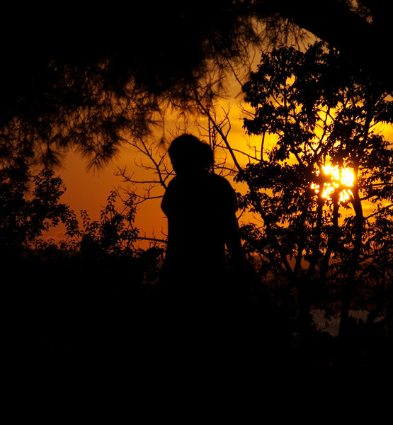 Sunset bath: Silhouette of a woman with sun shinign through branches of a pine tree and bushes