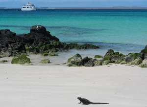 beautiful galapagos: galapagos island
