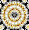 layered circle thins: abstract backgrounds, textures, patterns, geometric patterns, kaleidoscopic patterns, circles, shapes and  perspectives from altering and manipulating image