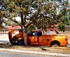 tree wrap accident3: damaged motor vehicle crashed & wrapped around roadside tree & then taken off the road
