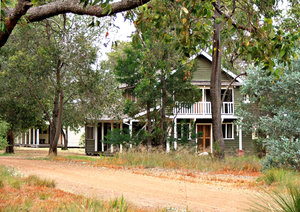 homes amongst the trees: rural homes amongst bushland trees