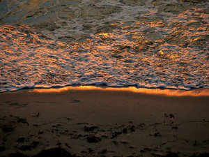 golden seashore: golden light of sunset reflecting off the waves and sand