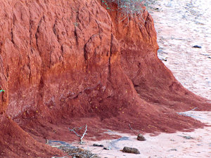 red pindan cliff side: red Australian pindan soil cliff side