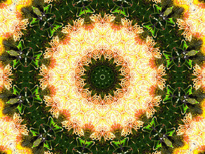 bright lights wreath: abstract backgrounds, textures, patterns, kaleidoscopic patterns, circles, shapes and  perspectives from altering and manipulating images