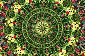 magic garden circle: abstract backgrounds, textures, patterns, kaleidoscopic patterns, circles, shapes and  perspectives from altering and manipulating images