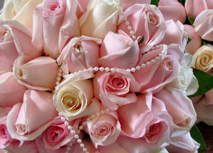 rose bouquet3: bride's rose-bud bouquet