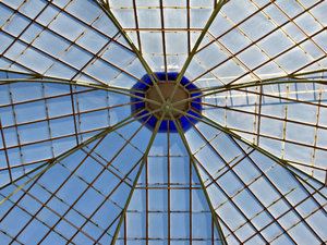 historic glass house interior: historic botanic gardens glass house roof interior