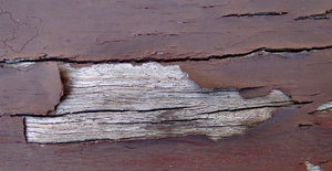 cracked and peeling2: old cracked wooden boards with peeling brown paint