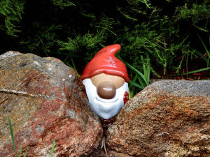 hiding in the garden2: miniature ornamental garden gnomes