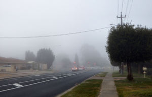 misty morrning1: early morning mist covering roadway