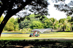 golf course movement5b: golfers on the move on public park golf course