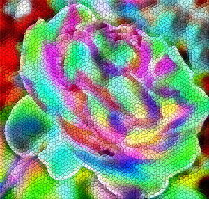 rainbow rose mosaic1: abstract colorful rose mosaic background, texture, pattern and perspectives