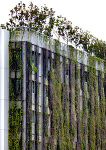 highrise gardening4: highrise rooftop & vertical wall gardens in Singapore