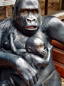 out of their enclosure14: replica zoo creatures for display and tactile experience - gorilla & baby