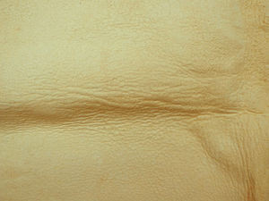 cream calfskin leather2: soft textured cream calfskin leather