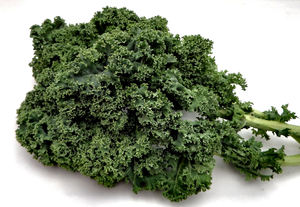 bunch of kale1: small bunch of curly kale