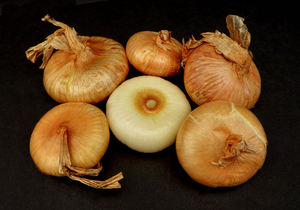doughnut onions3: flat squat brown onions - with one with skin peeled