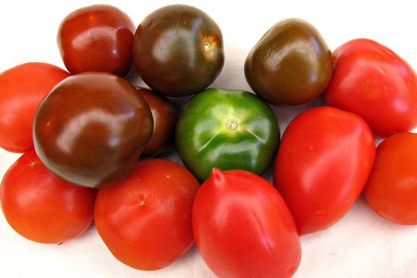 tomato varieties: different shapes and varieties of tomatoes