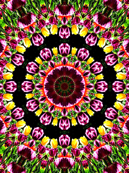 tulip corona: abstract backgrounds, textures, patterns, kaleidoscopic patterns, circles, shapes and  perspectives from altering and manipulating images